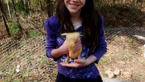 Little girl with duck